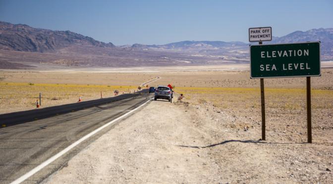 Superbloom, Death Valley, CA
