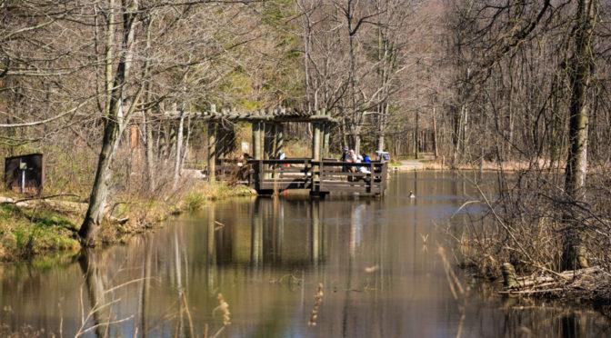 North Chagrin Nature Reserve, Ohio