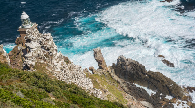 Cape Point, Cape Peninsula, Western Cape, South Africa